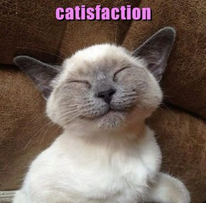 catisfaction