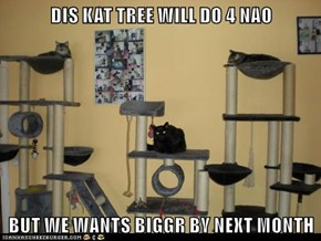 DIS KAT TREE WILL DO 4 NAO  BUT WE WANTS BIGGR BY NEXT MONTH