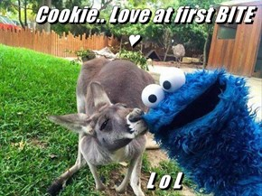 Cookie.. Love at first BITE ♥                   L o L