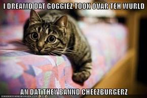I DREAMD DAT GOGGIEZ TOOK OVAR TEH WURLD  AN DAT THEY BANND CHEEZBURGERZ
