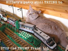 Hillary's pu**y still TRYING to   STOP the TRUMP Train, LoL