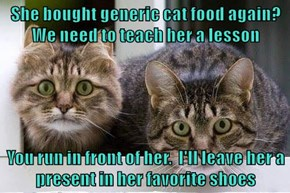 She bought generic cat food again?  We need to teach her a lesson  You run in front of her.  I'll leave her a present in her favorite shoes