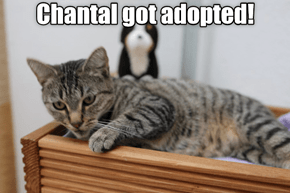 Chantal Got Adopted!