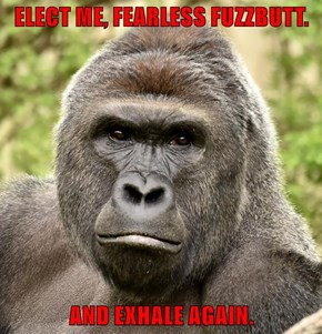 ELECT ME, FEARLESS FUZZBUTT.  AND EXHALE AGAIN.