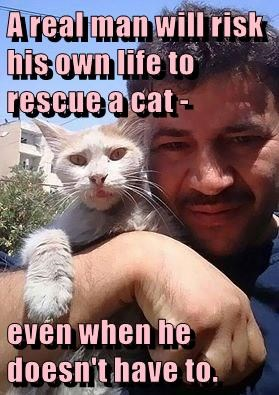 A real man will risk his own life to rescue a cat -  even when he doesn't have to.
