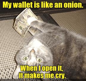 Miser Cat