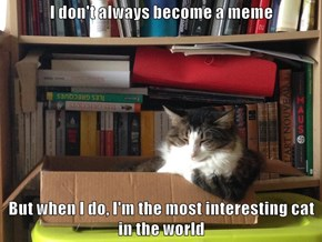 I don't always become a meme