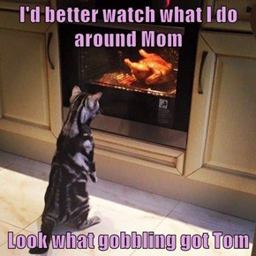 I'd better watch what I do around Mom  Look what gobbling got Tom