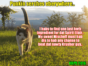 Prowd and protectiv father Punkin looks far & wide over teh countryside and wilds of Rio.. Hims must find teh scarce herbs & ingredients for teh Elixir dat Madame Esmeralda told hims abowt dat might help hims sweet dawter Mischief fite dat scary Krusher!