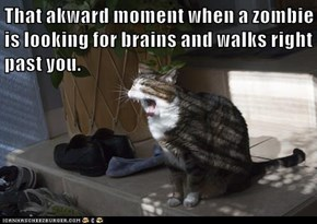 That akward moment when a zombie is looking for brains and walks right past you.