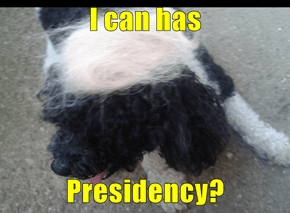 I can has  Presidency?