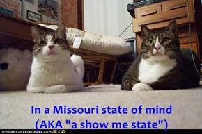 "In a Missouri state of mind                                                             (AKA ""a show me state"")"