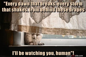"""Every dawn that breaks, every storm that shakes, from behind these drapes  I'll be watching you, human""!"