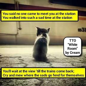 """""""Sad Room"""" (TTO """"White Room"""" by Cream)   (recaption: http://tinyurl.com/hejamho"""
