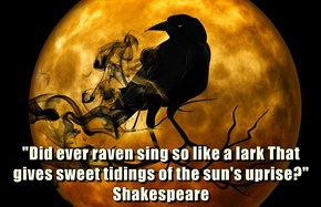 """Did ever raven sing so like a lark That gives sweet tidings of the sun's uprise?"" Shakespeare"