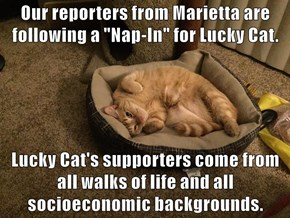"""Our reporters from Marietta are following a """"Nap-In"""" for Lucky Cat.   Lucky Cat's supporters come from all walks of life and all socioeconomic backgrounds."""