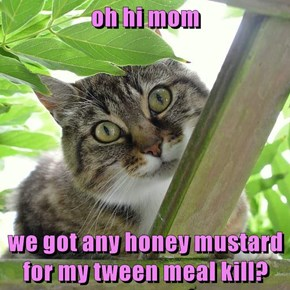 oh hi mom  we got any honey mustard for my tween meal kill?