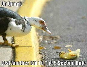 Oh Quack  Lost Another Kid To The 5 Second Rule