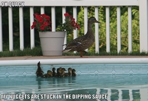 OH QUACK  MY NUGGETS ARE STUCK IN THE DIPPING SAUCE