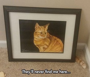 The Purrfect Hiding Place
