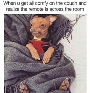 The Worst