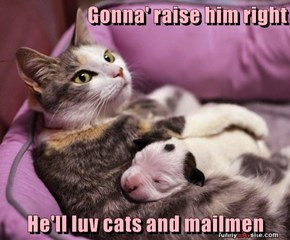Gonna' raise him right  He'll luv cats and mailmen