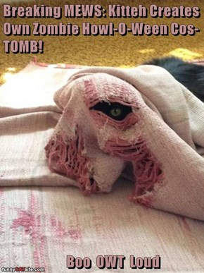 Breaking MEWS: Kitteh Creates Own Zombie Howl-O-Ween Cos-TOMB!          Boo  OWT  Loud