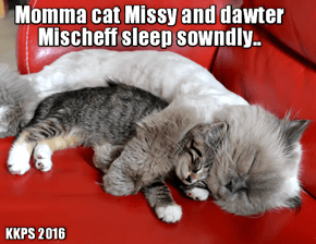 Loving momma Missy to the rescue! To make shur dat Mischief gets a good nite's sleep befor her battle wiff Krusher teh next day, Missy hugs her beloved dawter Mischief and dey boff hav a grate nite's sleep!