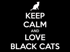 Happy Black Cat Day October 27
