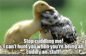 Cute- the duckling's last, best line of defense.