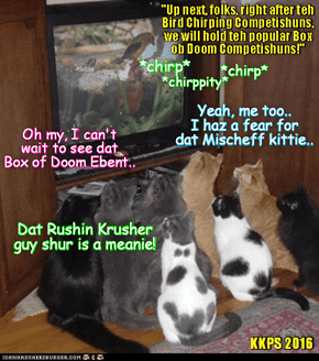 Rio LoLympics Broadcast: Kitties all around teh Globe wait in great anticipashuns for teh start of teh Box of Doom Event between sweet Mischeffs and teh undefeated tuff kittie Krusher Kalashnikov, who sez hims will show no mercy on hims opponent!