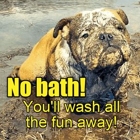 No bath!