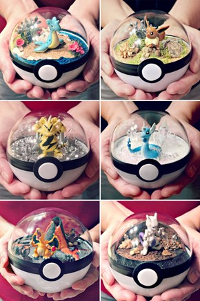 Need to Get One of These Pokeball Terrariums