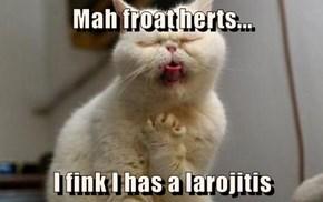 Mah froat herts...  I fink I has a larojitis