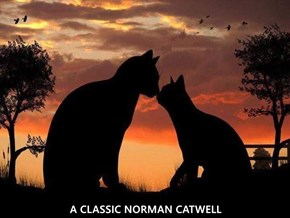A CLASSIC NORMAN CATWELL