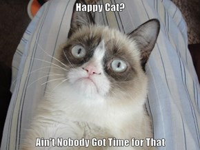 Happy Cat?  Ain't Nobody Got Time for That