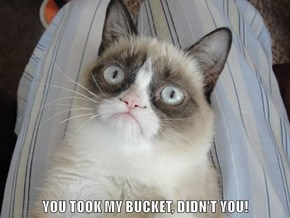 YOU TOOK MY BUCKET, DIDN'T YOU!