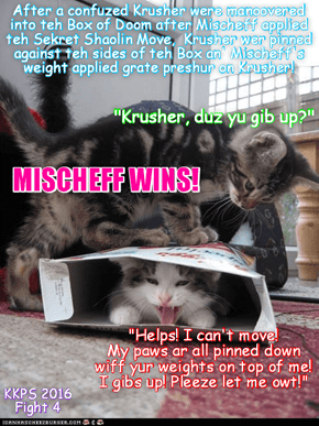 Teh Box of Doom Event: After Mischeff used teh one move she knew aginst Krusher, teh Sekret Shaolin Paw Twist Move, Mischeff twisted Krusher's paw forcing hims to go inside teh Box of Doom! Den she applied teh Skweeze Submission Move wiff her weights!