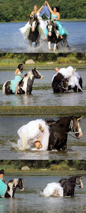 A Bride Riding a Unicorn Photoshoot is a Great Idea Until...