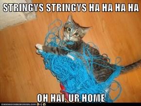 STRINGYS STRINGYS HA HA HA HA  OH HAI, UR HOME