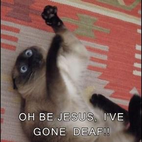 OH BE JESUS,  I'VE GONE  DEAF!!