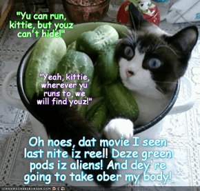 "Everytime kittie watches ""Invasion of the Body Snatchers"", hims habs teh same nightmares.. But maybe dis time it's REAL!"