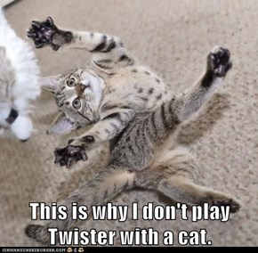This is why I don't play Twister with a cat.