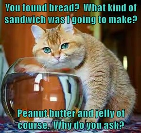 You found bread?  What kind of sandwich was I going to make?  Peanut butter and jelly of course.  Why do you ask?