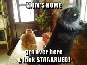 MOM'S HOME  get over here                                         & look STAAARVED!