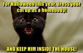 Keep Your Kitties Safe This Halloween!
