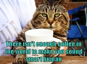 There isn't enough coffee in the world to make you sound smart human