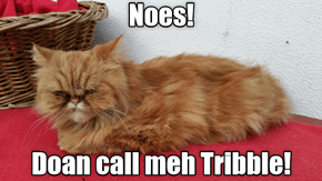 Doan Call Meh Tribble!