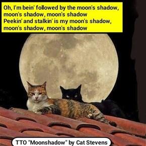 """Moon Shadowed"" (TTO ""Moonshadow"" by Cat Stevens)  (recaption:  http://tinyurl.com/jcrb7wf"