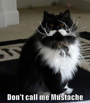 Don't call me Mustache